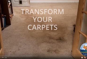Carpet Cleaning in Asheville - Transform Your Carpets